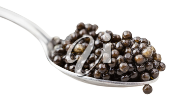 spoon with black sturgeon caviar close up isolated on white background