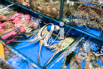 Travel to China - crabs and spiny lobsters in Huangsha Aquatic Product Trading Market in Guangzhou city in spring season
