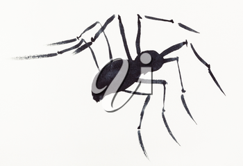 hand painting in sumi-e style on cream paper - one spider drawn by black watercolors