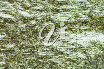 food background - surface of dried sheet Nori of seaweed used in Japanese cuisine for sushi