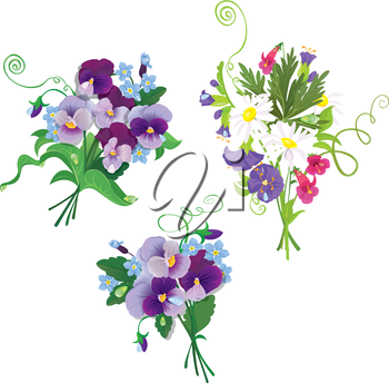 Set of holidays bouquets with chamomiles, pansies and forget me not flowers isolated on white background. Elements for holiday design.