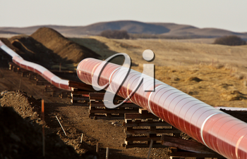 Pipes laid out for Natural Gas Pipeline