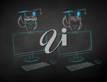 Vector chalk drawn illustrations of student owl sitting on desktop screen with and without face mask on black chalkboard background.