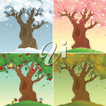 Four days in the life of apple tree. Vector illustration.
