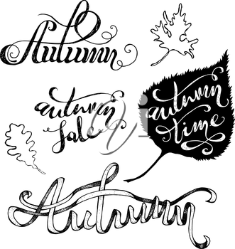 Hand-written words and leaves isolated on white background. Autumn. Autumn Sale. Autumn Time.