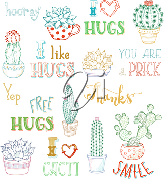 Cactus and succulent plants in flower pots. With spines or flowers and without. You are prick. Free hugs. Thanks. I like hugs. Smile.