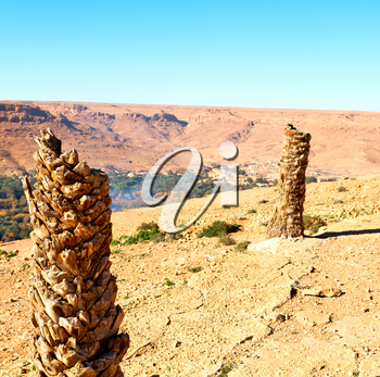 in   valley  morocco   africa the atlas dry mountain ground isolated hill