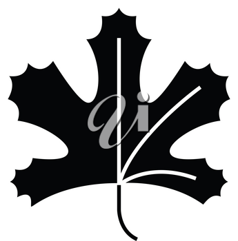 Simple flat black maple leaf icon vector