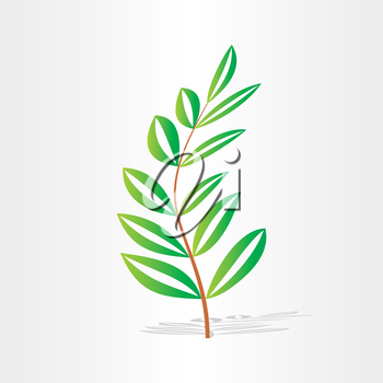 tree branch with green leaves freshness texture organic botany herb season background
