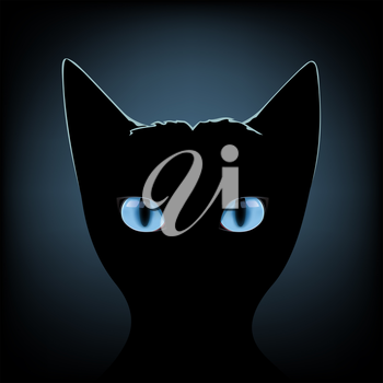 Silhouette of black cat with blue eyes on a dark background