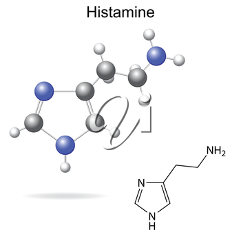 Structural model, chemical formula of histamine molecule, 2d and 3d isolated vector, eps 8