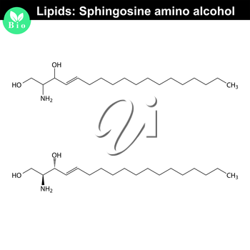 Sphingosine alcohol chemical structure, molecular structures of lipids, isolated on white background, 2d vector, eps 8