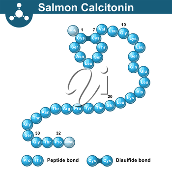 Salmon calcitonin hormone, 3d illustration, vector on white background, ball and stick style, eps 10