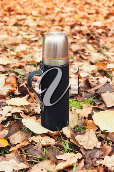 Stainless steel vacuum tourist thermos stands on fallen autumn leaves, vertical photo