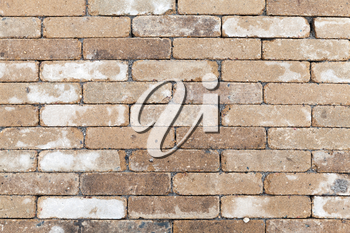 Old dirty yellow white brick wall, closeup background photo texture