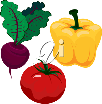 Beautiful and bright vegetables in vector. Paper, tomato and beet