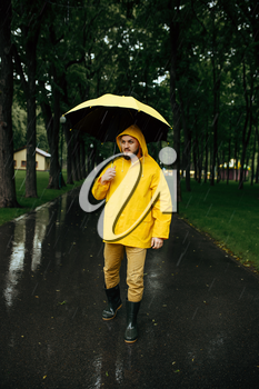 Man with umbrella walking in summer park in rainy day. Male person in rain cape and rubber boots, wet weather in alley