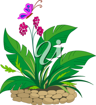 Bed with a Bright Tropical Plant Over Which the Butterfly Flies. Vector