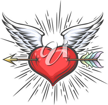 Heart with Wings pierced by Arrow Tattoo in retro style. Vector illustration.