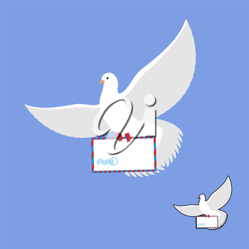 Postal pigeon and mailing envelope. White Dove carries and mail. Flying bird in its message.