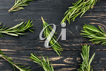 Scattered fresh sprigs of rosemary on a wooden background