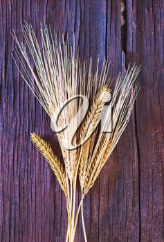 wheat on the wooden table, golden wheat