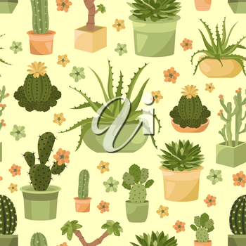 Cactuses and succulents seamless pattern. Houseplants. Vector illustration