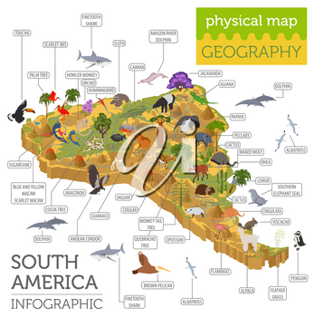Isometric 3d South America flora and fauna map elements. Animals, birds and sea life. Build your own geography infographics collection. Vector illustration