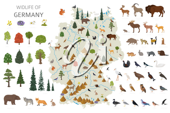 Flat design of Germany wildlife. Animals, birds and plants constructor elements isolated on white set. Build your own geography infographics collection. Vector illustration