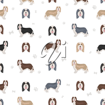 Bearded collie seamless pattern. Different coat colors and poses set.  Vector illustration