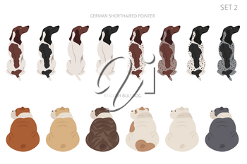Sitting dogs backside clipart, rear view. Diifferent coat colors variety. Pet graphic design for dog lovers. Vector illustration
