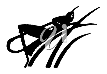 Royalty Free Clipart Image of a Grasshopper