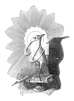 Royalty Free Clipart Image of a Bird on Books