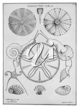 Royalty Free Clipart Image of Designs from Seashells