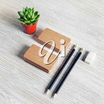 Blank stationery set. Brown paper business cards, pencils, eraser and succulent plant.