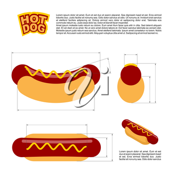 Hot dog infographics standard. reference  sizes of fast food. Drawing, bread and sausages scheme. Template for preparation of hot dogs