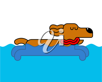 Dog swimming isolated. Home pet in water. Vector illustration