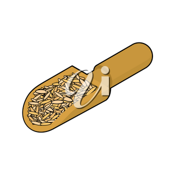 Oat in wooden scoop isolated. Groats in wood shovel. Grain on white background. Vector illustration