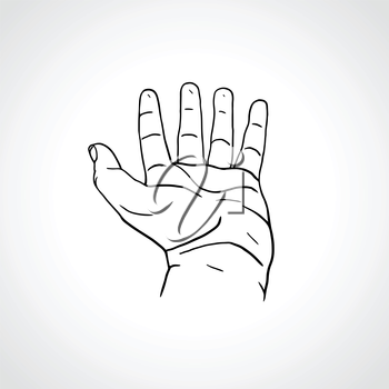 Open empty line art drawing hand Isolated on white background. Close up of human hand. Male hand with empty place for holding something. Outline drawing