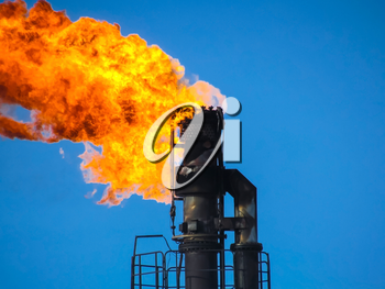 System of a torch on an oil field. Burning through a torch head.