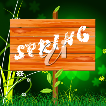 Nature Spring Representing Green Warm And Countryside