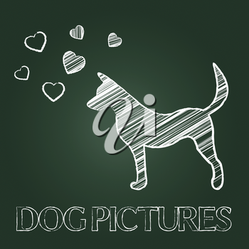 Dog Pictures Showing Canine Pets And Photos