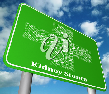 Kidney Stones Meaning Ill Health And Ailment