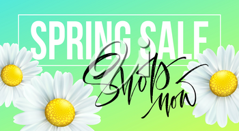 Spring sale banner, background with daisy flowers. Seasonal discount. Vector illustration EPS10
