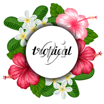 Background with tropical flowers hibiscus and plumeria. Image for holiday invitations, greeting cards, posters.