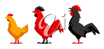 Set of variety chicken silhouettes. Stylized illustration.