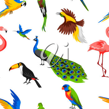 Seamless pattern with tropical exotic birds. Wild fauna of jungle and rainforest.