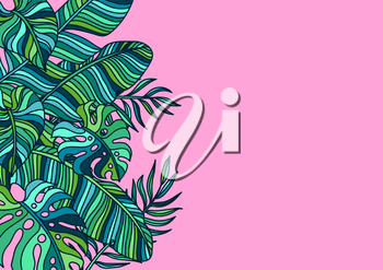 Background with palm leaves. Decorative image of tropical foliage and plants.