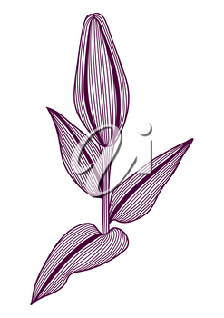 Illustration of stylized lily flower. Decorative image of beautiful bud.. Linear texture.
