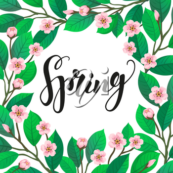 Spring text on floral background. Calligraphic Lettering. Cherry blossom. Vector illustration of branch with flowers. Banner template.